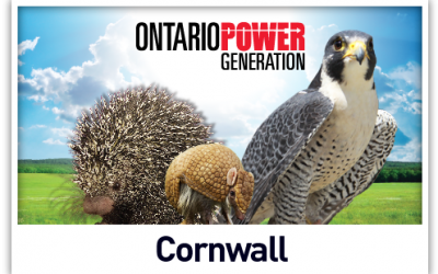 September 30, 2017: Live Animal Shows at St. Lawrence Power Development Visitor Centre