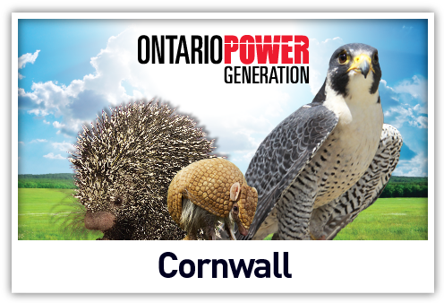 Live Animal Shows at St. Lawrence Power Development Visitor Centre in Cornwall, Ontario