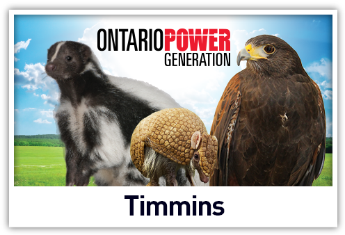 Live Animal Shows at Timmins Native Friendship Centre in Timmins, Ontario
