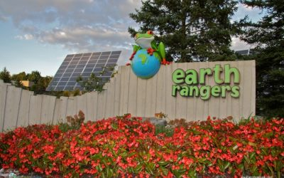 Sustainable and a Little Bit Wild: The Earth Rangers Centre