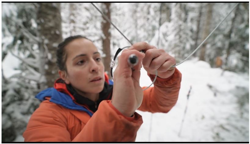 Chasing a Trace: One Woman's Quest to Study BC's Wolverines