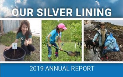Annual Report 2019: Our Silver Lining